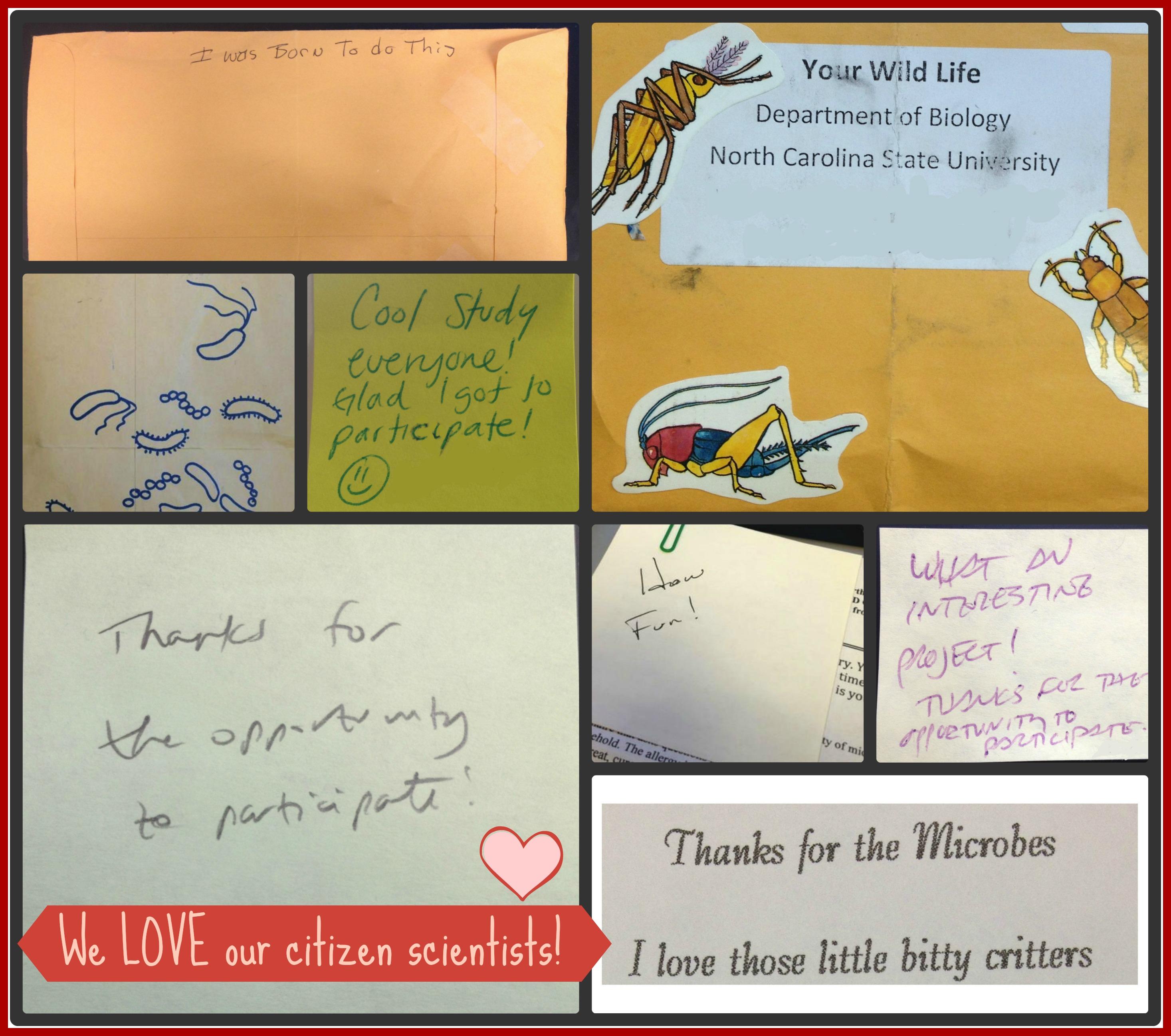 Participant Love Collage 1 Valentine