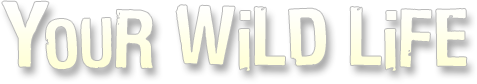Your Wild Life