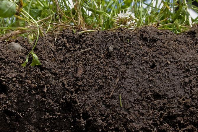 NRCS-Soil-Health_670