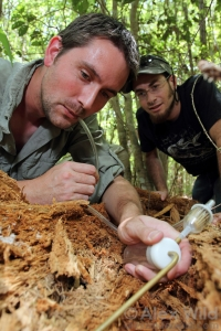 Benoit Guenard and his trusty ant-collecting aspirator - © Alex Wild